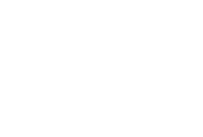 Scalesquad Logo